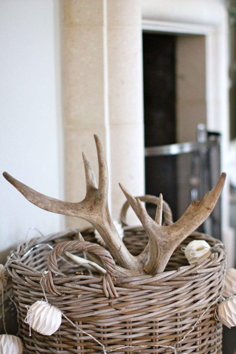 How to build a shed antler trap pdf plans for Antler decoration